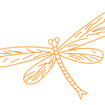 Dragonfly Beauty of Now logo