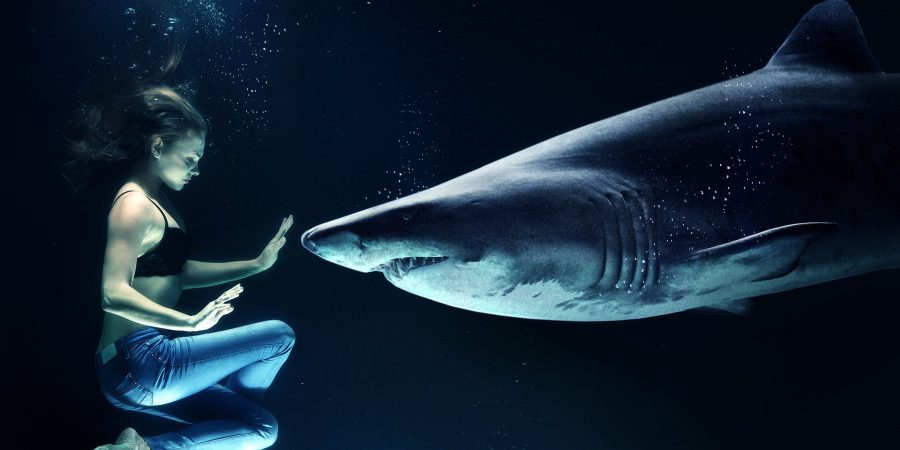 Under-Water-Troubled-times-Difficult-breathing-shark-the-beauty-of-now-