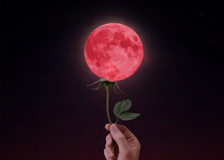 Moon-Menstruation-pain free-program-The Beauty of Now