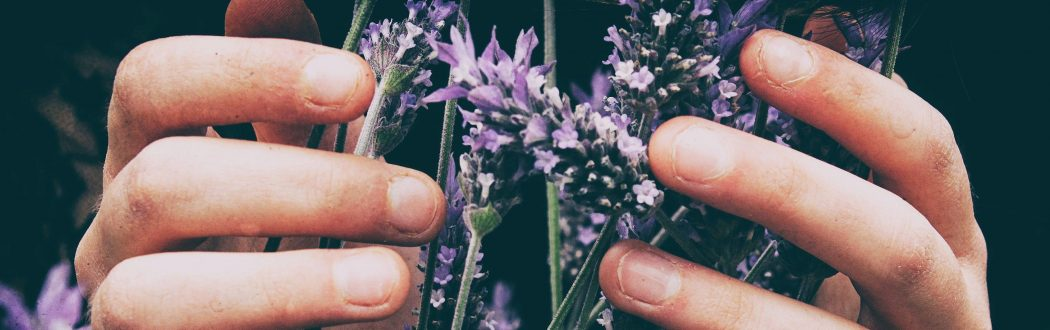 Hands-Lavender-Reiki-Energy-Healing-The-Beauty-Of-Now